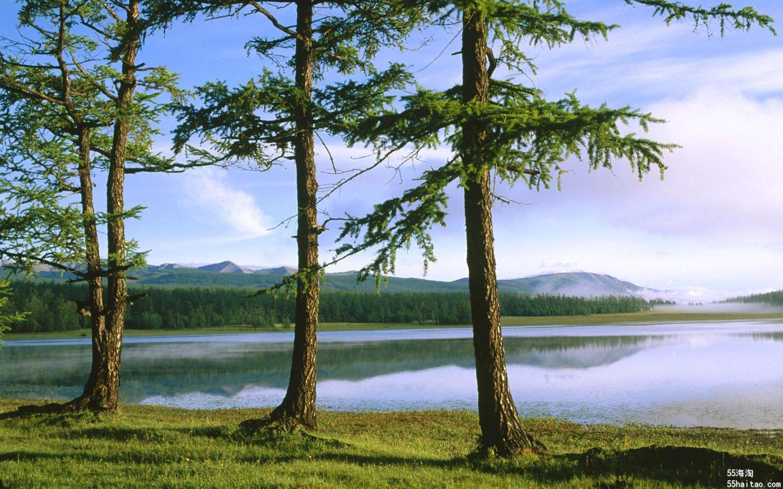 好美的风景,一个人静静的坐下,享受着清欣的空气